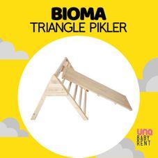 Gambar Bioma Triangle pikler