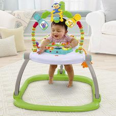 Gambar Fisher-price Rainforest friends space saver jumperoo